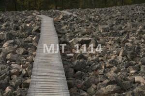 MJT_1114