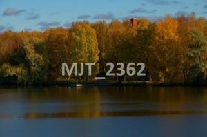 MJT_2362
