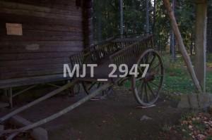MJT_2947