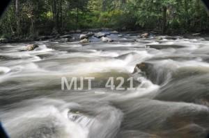 MJT_4212