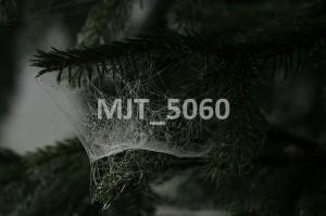MJT_5060