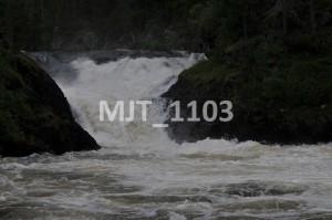 MJT_1103