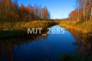 MJT_2685