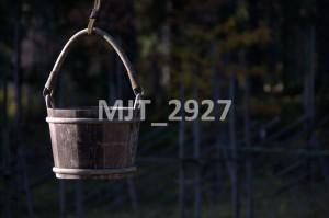 MJT_2927