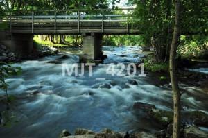 MJT_4201