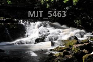 MJT_5463