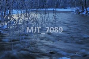 MJT_7089
