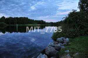 MJT_7785