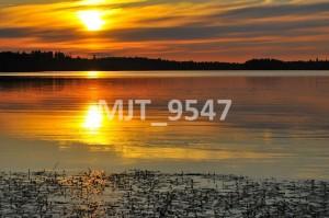 MJT_9547